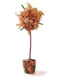 Topiary floral sobre el fondo blanco fotos de archivo libres de regalías