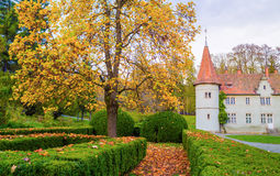 Topiary garden at autumn. Shenborn castle and english garden around it Royalty Free Stock Photo