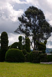 Topiary Garden Cemetery, Ecuador. The Cemetery Of Tulcan, Called The Green Sculpture Is A Structure Without Precedents In The World Stock Image