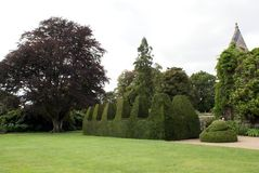 Topiary garden. Formal garden with a sculptured hedge in battlements shape and topiary, England Royalty Free Stock Photos