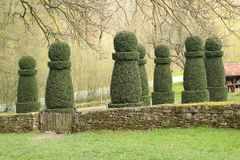Topiary Garden, Hessenpark Germany. Portrait of shaped trees in the form of chess pawn, Freilichtmuseum Hessenpark, the Open Air Museum in Germany Stock Images