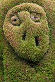 Topiary garden, Zarcero Royalty Free Stock Photo