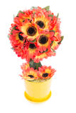 Topiary geïsoleerde zonnebloem stock fotografie