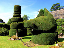 Topiary at Haddon Hall, Derbyshire. Topiary in the gardens of Haddon Hall, Peak district National Park, Derbyshire, England, UK Stock Photography