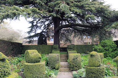 Topiary at Hidecote Manor. From a field high up on the Cotswold escarpment to one of the country's most influential 20th-century gardens, Hidcote is world famous Stock Photo
