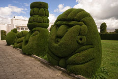 Topiary i den Tulcan Ecuador kyrkogården Royaltyfria Bilder
