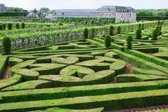 Topiary i den Villandry slotten Arkivbild
