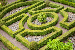 Topiary knot garden Stock Photography