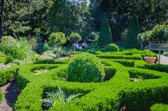 Topiary - Nowy Jork ogród botaniczny - Miasto Nowy Jork Obrazy Royalty Free