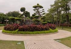 Topiary ornamental en el parque de Bailuzhou en Xiamen foto de archivo libre de regalías