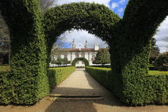 Topiary, Ornamental Garden Stock Images