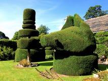 Topiary på Haddon Hall, Derbyshire. Arkivbild