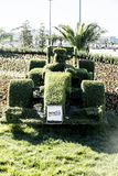 Topiary-race car. Sochi, Russia -11 November 2014 : Formula One, Russian Grand Prix, Sochi autodrom, 16 stage Stock Photography