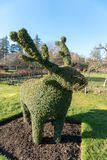 Topiary scultpure of reindeer royalty free stock photography