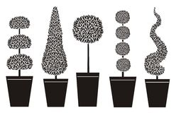 Topiary shapes stock illustration