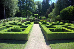 Topiary shrubs. Clipped topiary box shrubs in an English country garden Royalty Free Stock Photo