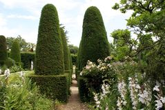 Topiary Trees Avenue. Formal Garden Gravel Path Royalty Free Stock Photography
