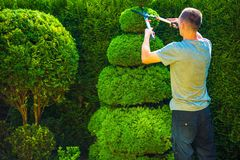 Topiary Trimming Plants Royalty Free Stock Image
