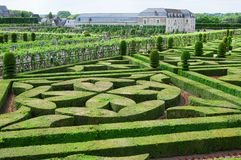 Topiary in Villandry castle Stock Photography
