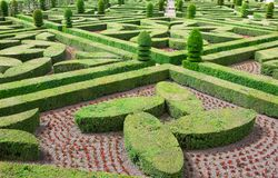 Topiary in the Villandry castle Royalty Free Stock Photos