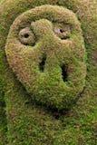topiary zarcero κήπων Στοκ φωτογραφία με δικαίωμα ελεύθερης χρήσης