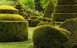 Topiaryträdgård på Longwood trädgårdar, PA arkivbild