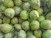 Topical coconuts. Asian drink and fresh fruit Royalty Free Stock Photography