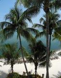 A Topical Florida keys Beach Royalty Free Stock Photo