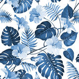 Topical Palm Leaves Royalty Free Stock Photo