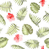 Topical palm leaves pattern. Royalty Free Stock Image