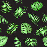Topical palm leaves pattern. vector illustration