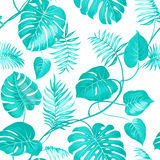 Topical palm leaves royalty free illustration