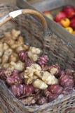 Topinambour. Jerusalem artichoke (Helianthus tuberosus) in a wicker basket on farmers market Stock Photo