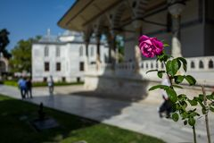 The Topkapi Palace in Istanbul, Turkey. stock photo