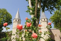 Topkapi Palace. With roses, Istanbul, Turkey Stock Photo