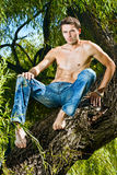 Topless male model in jeans trousers sitting tree. Handsome attractive topless male model / man in jeans trousers sitting on a tree Royalty Free Stock Photography