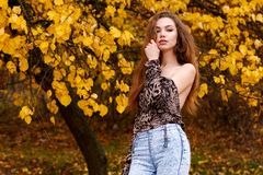Topless young girl in autumn park. Topless young girl with long brown hair in autumn park Royalty Free Stock Photos