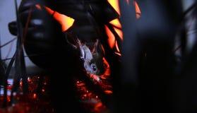 Topo di notte su Halloween Immagini Stock Libere da Diritti