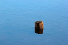 Topo solitário da árvore na água Fotografia de Stock Royalty Free