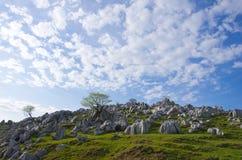 Topografia di morfologia carsica (morfologia carsica dello Shikoku) fotografia stock libera da diritti