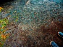 Topografin av asfalten och gräset under min fot Royaltyfri Fotografi