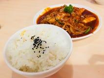 Topokki avec la tranche de porc dans la source de la Corée avec du riz complétant par le sésame photo libre de droits
