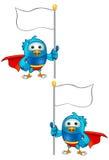 Toppen blåttfågel - innehav sjunker Royaltyfri Fotografi