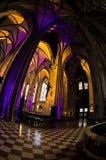 Toppen bred sikt inom av upplysta Sts Stephen domkyrka på centret av Wien arkivbild
