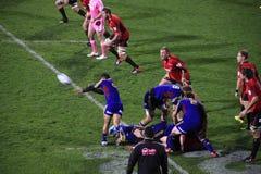 Toppen klunga för spelare för rugbylek Royaltyfria Foton