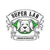 Toppen labradorhund som bär grön udde royaltyfri illustrationer