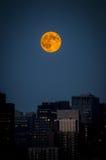 Toppen måne Fotografering för Bildbyråer