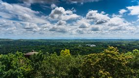 Toppen molnig himmel i skogen arkivbilder