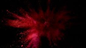 Toppen ultrarapid av den kulöra pulverexplosionen stock video