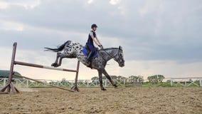 Toppen ultrarapid av en kvinnajockey hoppar över barriärerna på en häst arkivfilmer